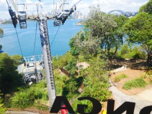 taronga zoo sky walk