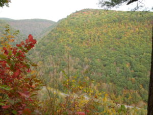 fall colors pa grand canyon